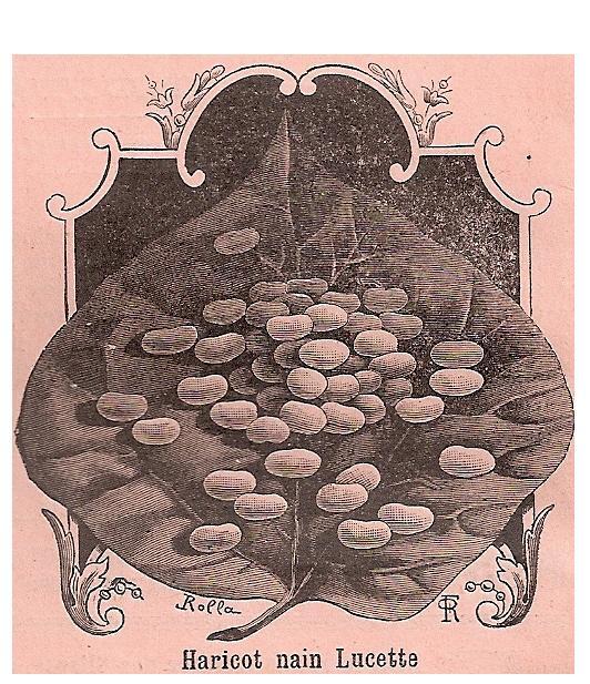 Lucette -Rivoire 1912- - kopie
